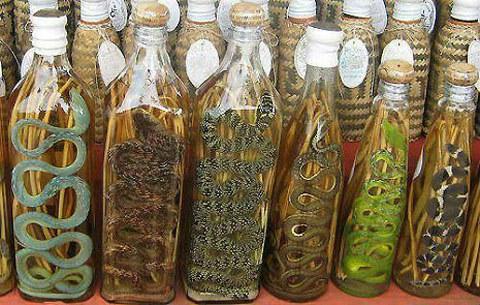 asian-snake-wine