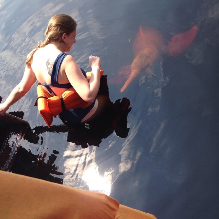 Nadando com o boto cor de rosa