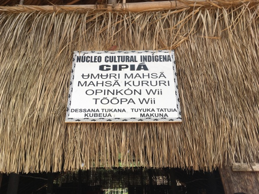 Aldeia Indígena em Manaus
