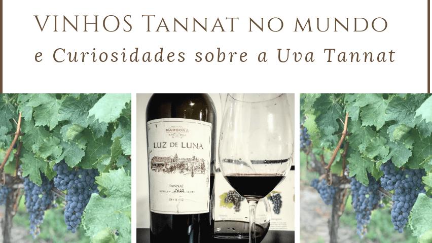 Vinhos Tannat no Mundo e Curiosidades da Uva – V³: Vinho