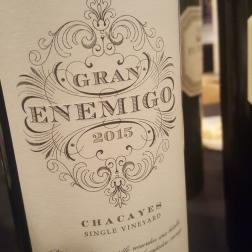 Gran Enemigo Chacayes 2015