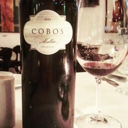 Cobos Malbec 2011