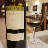 Malleolus de Sanchomartin 2006