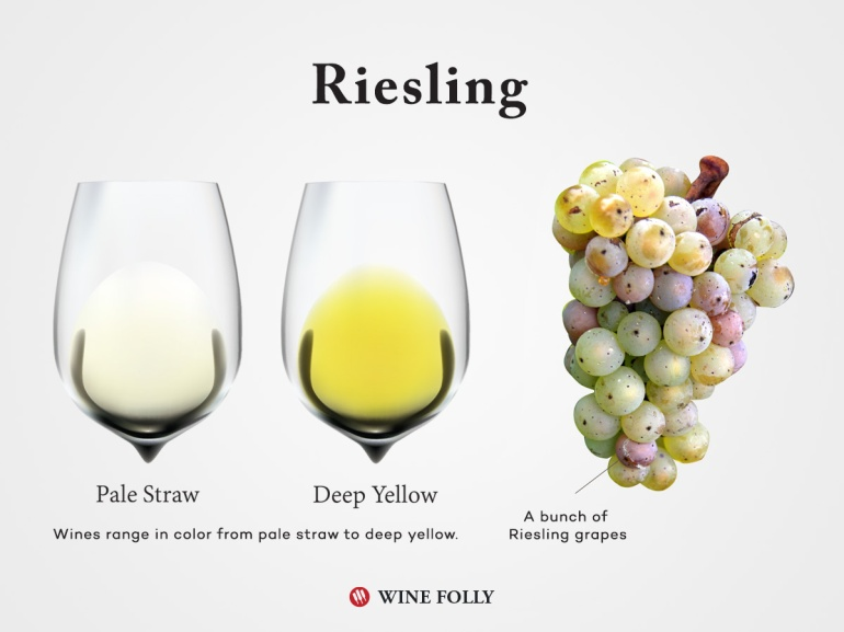 Riesling-Wine-Grapes-Glass-Wine-Folly
