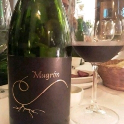 Mugron Negro 2017