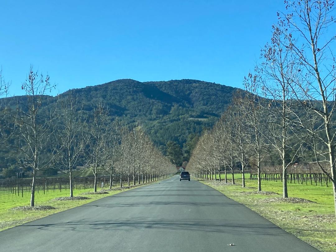 Turismo em Napa Valley